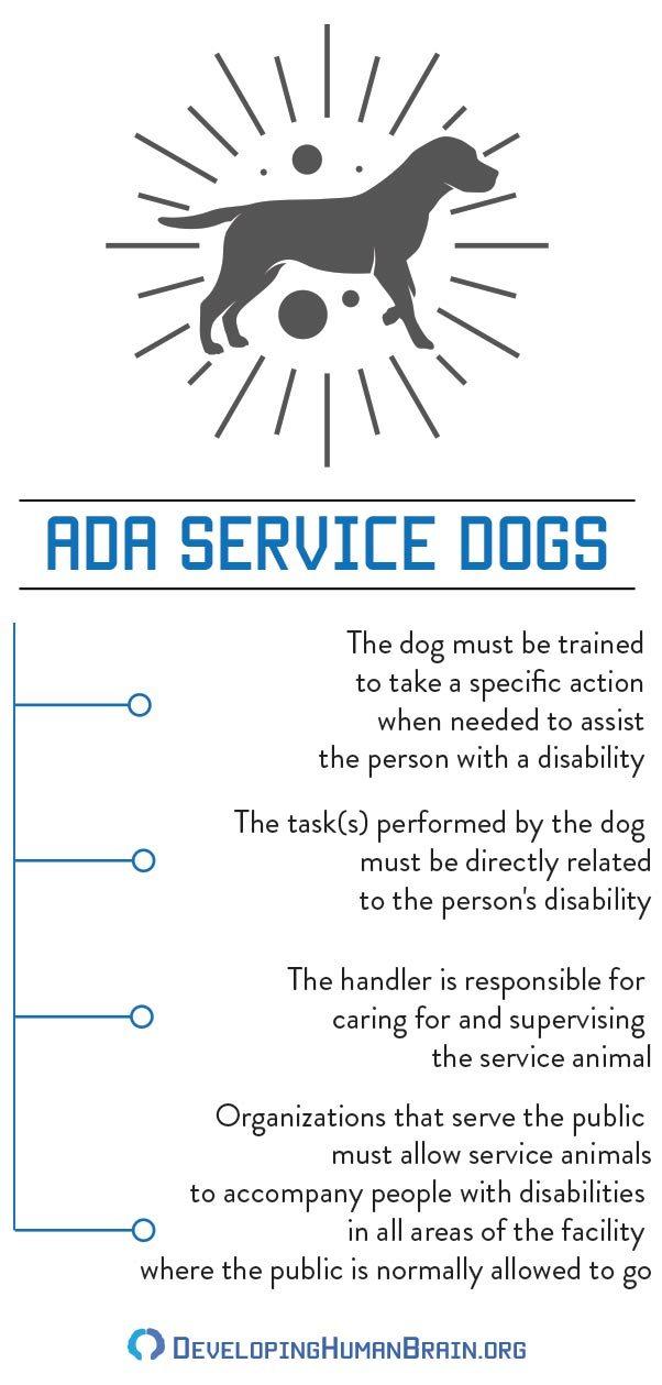 ADA Service Dogs